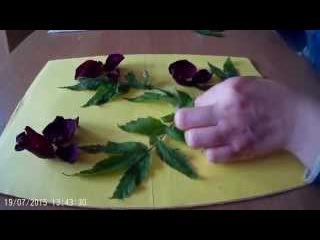 Картины из цветов своими руками.(варианты декора)
