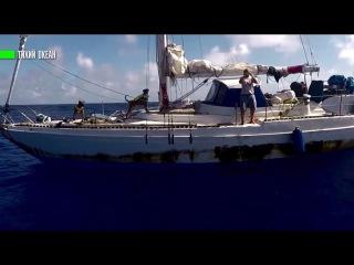 В Тихом океане спасли американок и их питбулях , которые пять месяцев дрейфовали на  ...