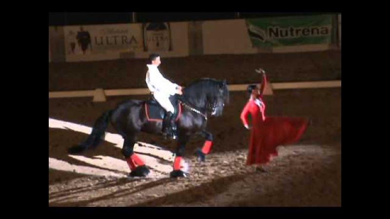 Flamenco Act - PVDA Dancing Horse Challenge 2011