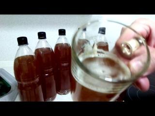 домашнее хлебное бородинское пиво часть 3  дегустация