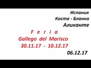 """Испания,Коста-Бланка,город Аликанте выставка """" Feria Gallego del Marisco """""""