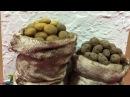 Como hacer Patatas miniatura Papas Potatoes miniature tutorial