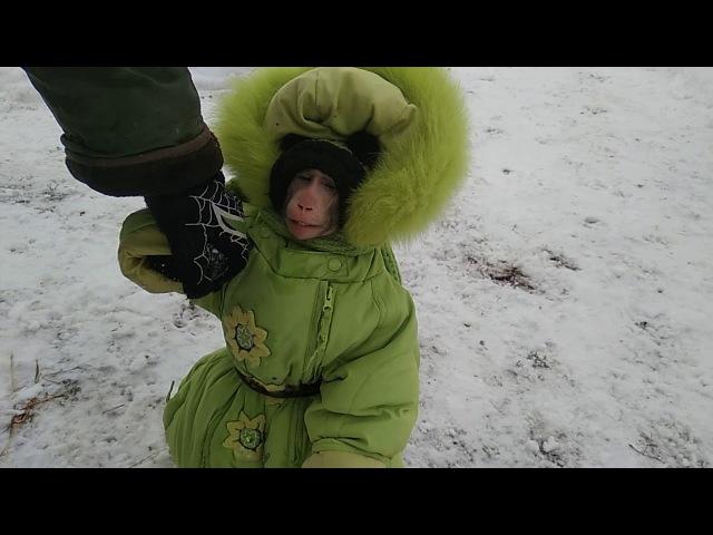 Топ топ Топает малыш Фёдор