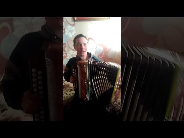 Гармонист чувашин