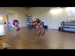 Роботы мастерски балансируют, как будто у них есть позвоночник