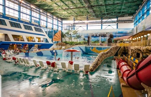 дельфин фото екатеринбург аквапарк лимпопо подобрать