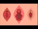 Viva la vulva , campaña publicitaria de Liberesse