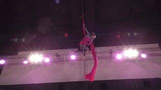 Полина Назарова. Catwalk Dance Fest IX[pole dance, aerial] .