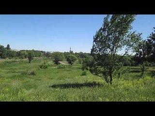 Пение птиц у Казачьих Лагерей под Новочеркасском