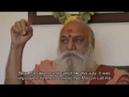 Swami Kedarnath describes how he came to Sri Ma Anandamayi