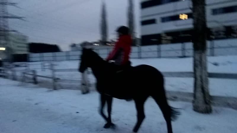 Катя отшагивает после тренировки с Хисой