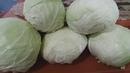 Как я солю белокачанную капусту часть 2