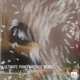 Pure Massage Music - Beethoven - Sonata Pathetique