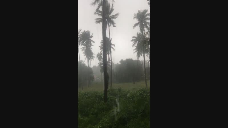 У нас Тайфун Всё будет норм 👌👌 Даже в России по новостям покозали