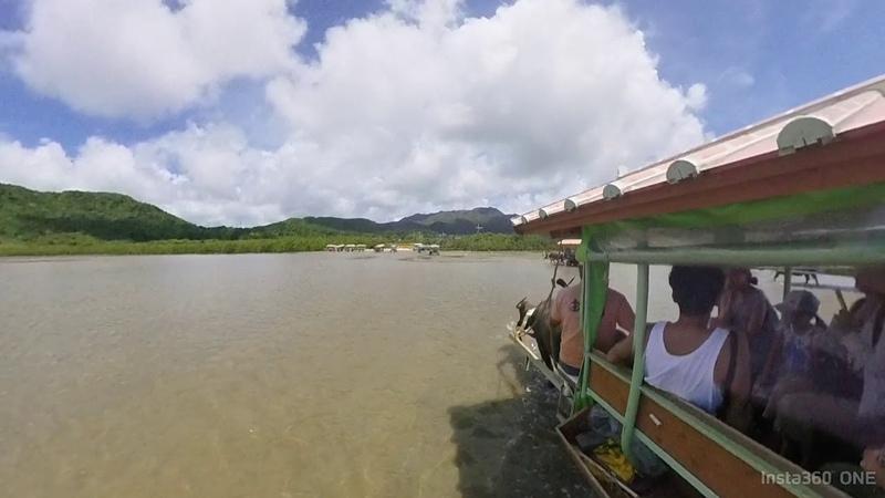 Yubu jima Iriomote water buffalo cart Hyperlapse video