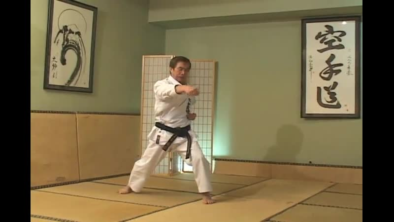Hirokazu Kanazawa Mastering Karate part 6 Niju Hachi Ho