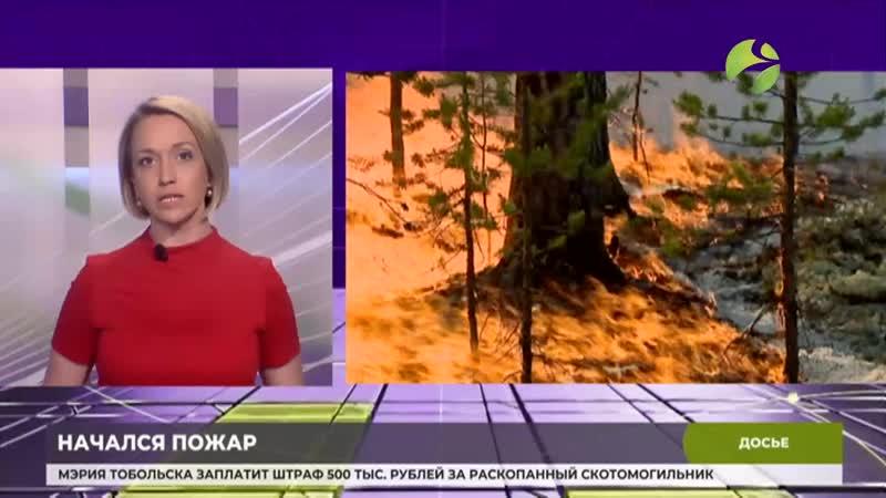 Природный пожар вспыхнул в районе села Лопхари mp4