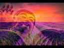 RAISE VIBRATION - 528Hz Positive Energy - Be Positive Minded, Calm Balanced Meditation Music