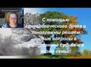 Альфа-Омега Плюс Польза ТВ Лидия Орловская Как с помощью генеалогического древа и генограммы реш