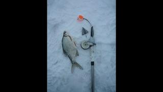 Снасть вертолет для зимней рыбалки
