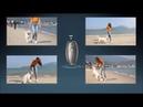 Modus Ultrasonic Bark Control Device, Anti Barking Device