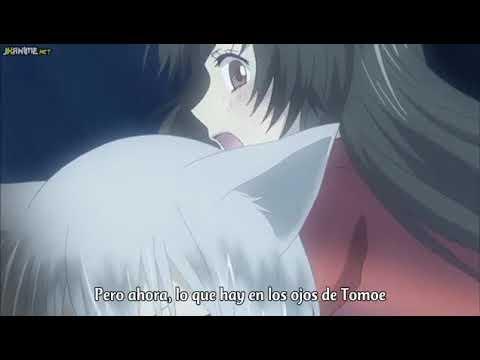 Tomoe lleva a Nanami a los arboles de cerezo