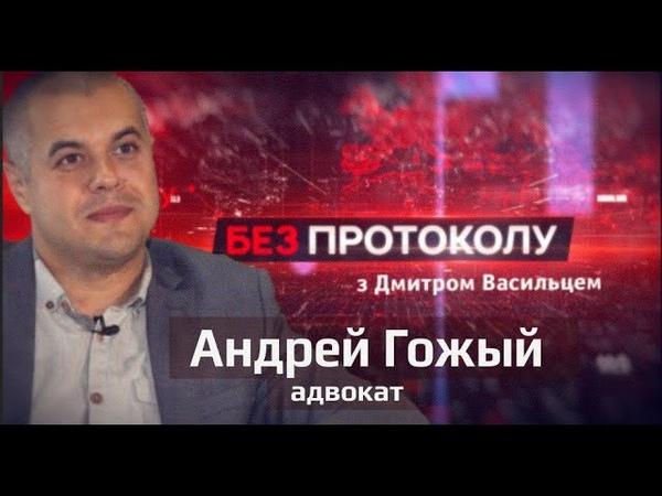 Андрей Гожый Политика пришла ко мне Без протокола с Дмитрием Васильцом