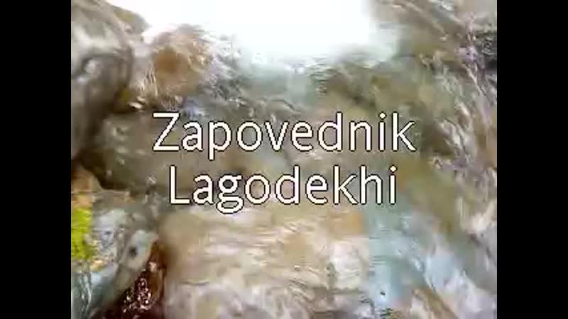 Lagodekhi