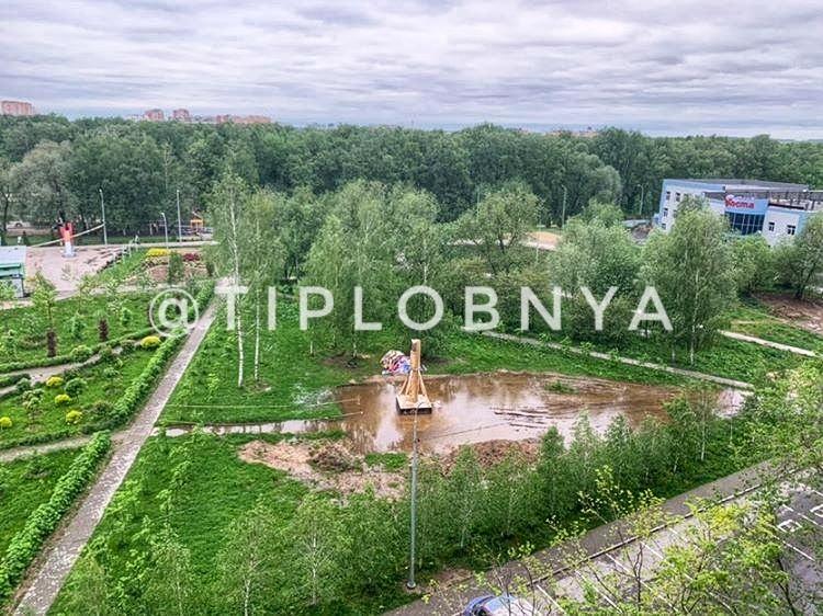 Новый пруд в городском парке
