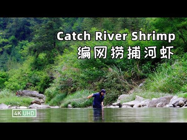 Fried River Shrimps with Chives丨韭菜炒河虾丨4K UHD丨小喜XiaoXi丨阳光灿烂的日子,上山转转,心情20