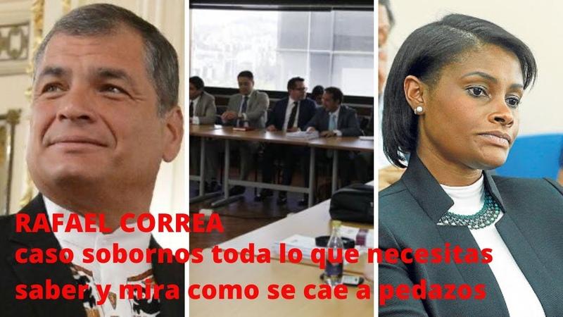 RAFAEL CORREA HOY Toda la historia caso sobornos la mentira la persecución y como se desmorona 🙈🤥