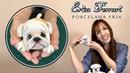 Erica Ferrari Porcelana Fría | Cachorro Bulldog Corcho | Clase Gratis | DIY | Tutorial Fácil