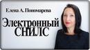 Электронный СНИЛС Елена А Пономарева