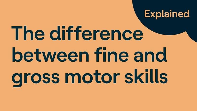 Gross Motor Skills vs Fine Motor Skills What's the difference