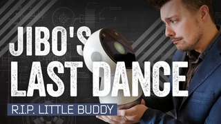 How Jibo The Robot Succeeded  By Dying