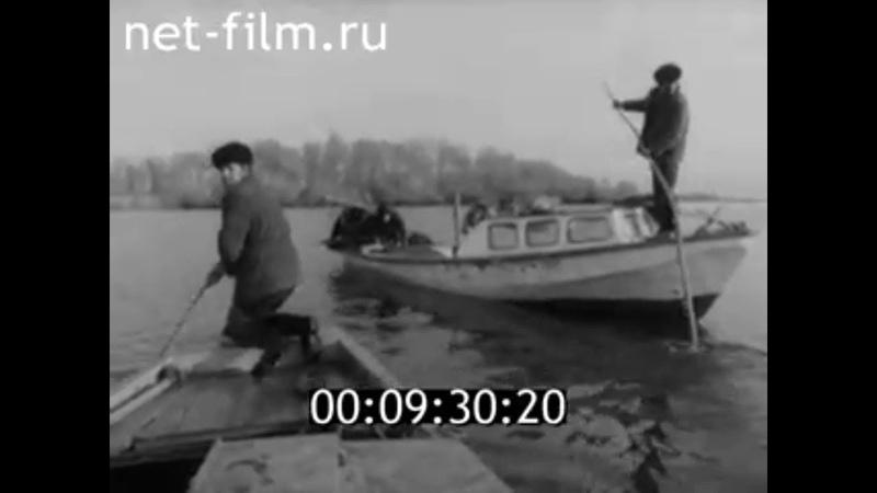 1985г с Квасниковка колхоз Путь рыбака Энгельсский район Саратовская обл