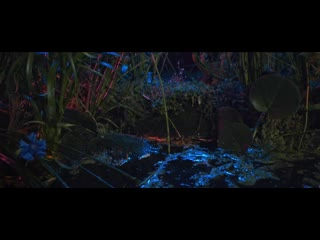 Floating Points - Last Bloom (Official Video 2019)