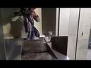 Стильные туалеты в парках и зонах отдыха во Вроцлаве