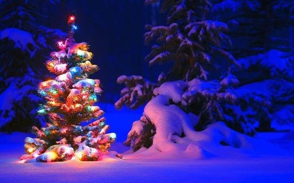 Скачать Новогодние Живые Обои Елку Со Звуком