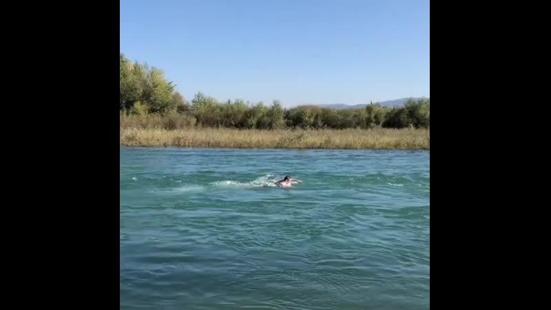 ХАБИБ плывёт против течения по реке в