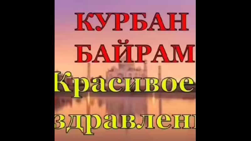 VID_31031112_004416_136.mp4