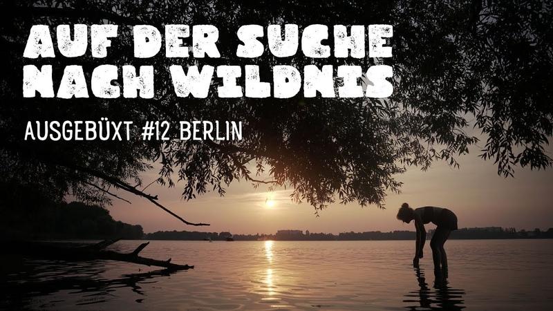 Auf der Suche nach Wildnis am Tegeler See Ausgebüxt 12 Berlin Wandern Trekking Deutschland