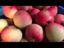 Переработка яблок без сахара и банок