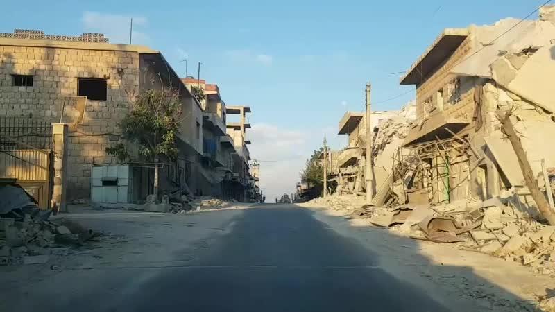 Алаа аль-Джалиль (фелине-мэн). Миссия по спасению кошек Кафранбеля (Сирия, южный Идлиб)