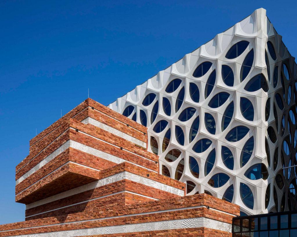 Реконструкция естественно-научного музея Naturalis вЛейдене