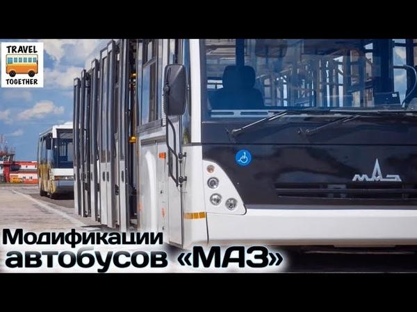 Разновидности и модификации автобусов МАЗ | Bus MAZ