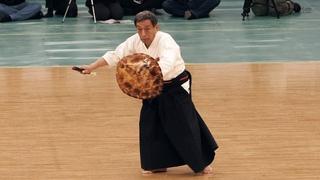 Okinawan Kobudo: Ryukyu Kobujutsu - 42nd Japanese Kobudo Demonstration (2019)
