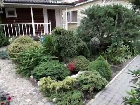 Волшебный сад необычных растений. В гостях у Оли Молчановой.