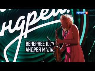 Анастасия Высоцкая на шоу Андрея Малахова
