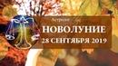 ГОРОСКОП НОВОЛУНИЕ в ВЕСАХ 28 сентября 2019 Астролог Olga